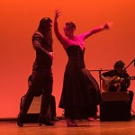 VII Concurso Nacional de Flamenco 2017